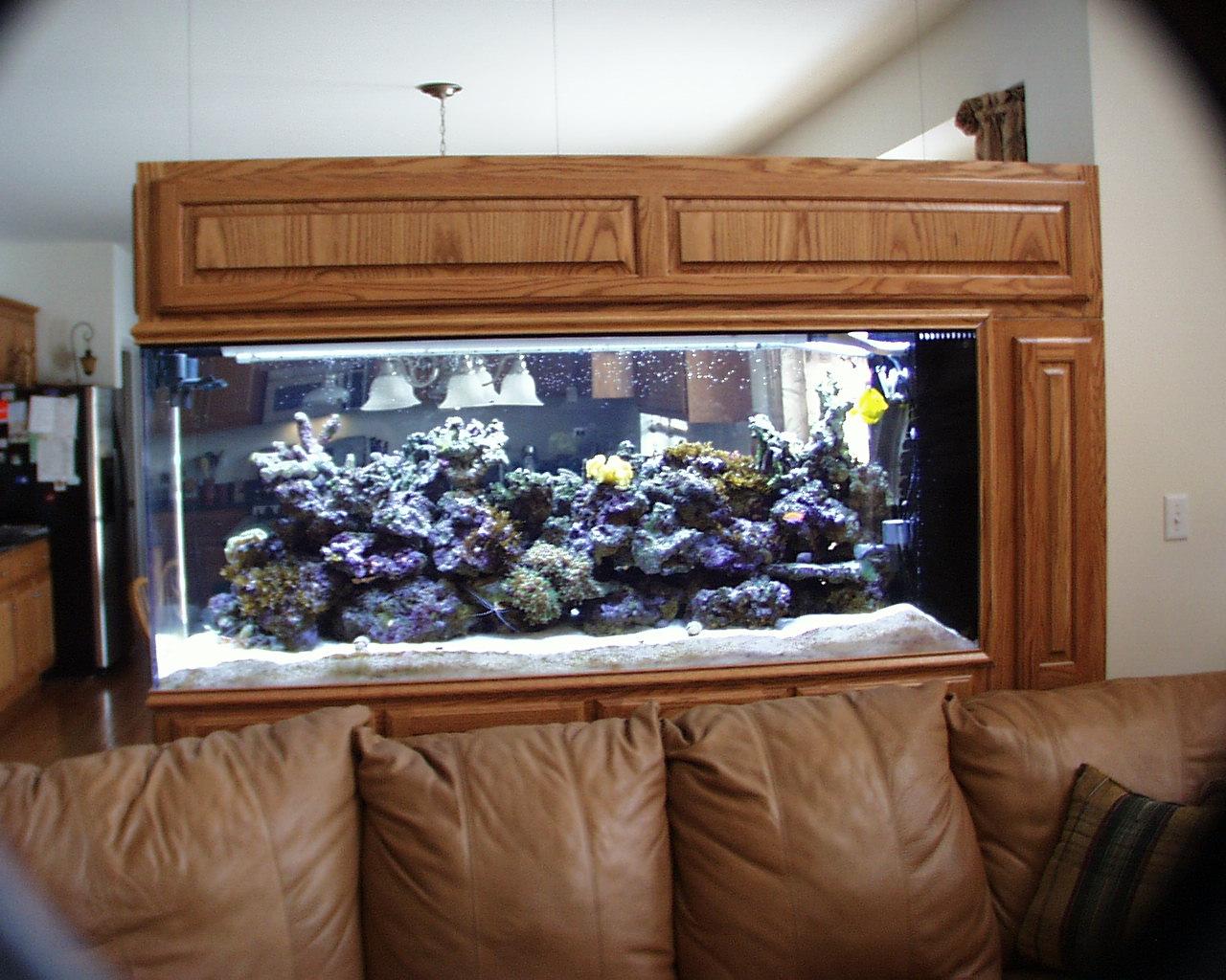 Aquarium Equipment