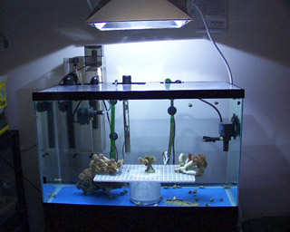 Aquarium Equipment